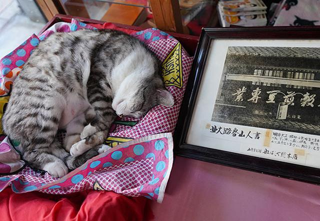 画像: 写真は昭和30年頃までの看板。北大路魯山人の書。