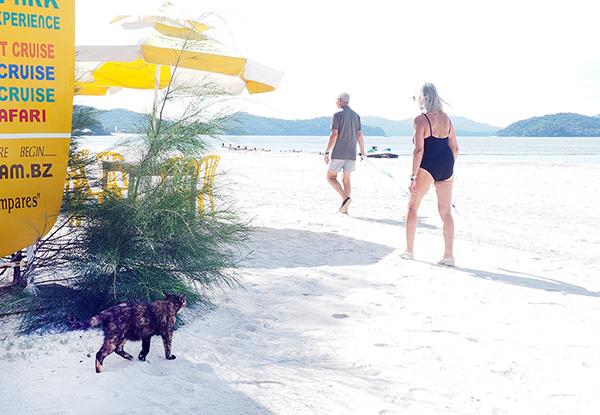 画像: 世界中から観光客が集まる人気のビーチです。