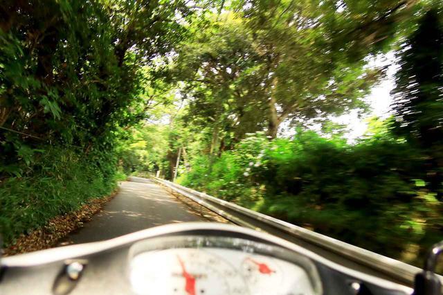 画像5: 原付50ccスクーターで地元の知らない世界と出会う