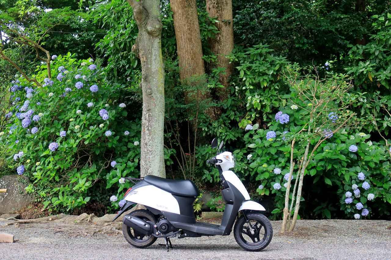 画像3: 原付50ccスクーターで地元の知らない世界と出会う