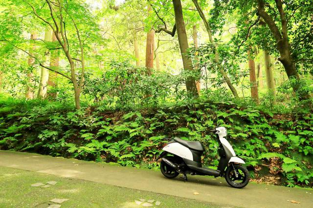 画像4: 原付50ccスクーターで地元の知らない世界と出会う