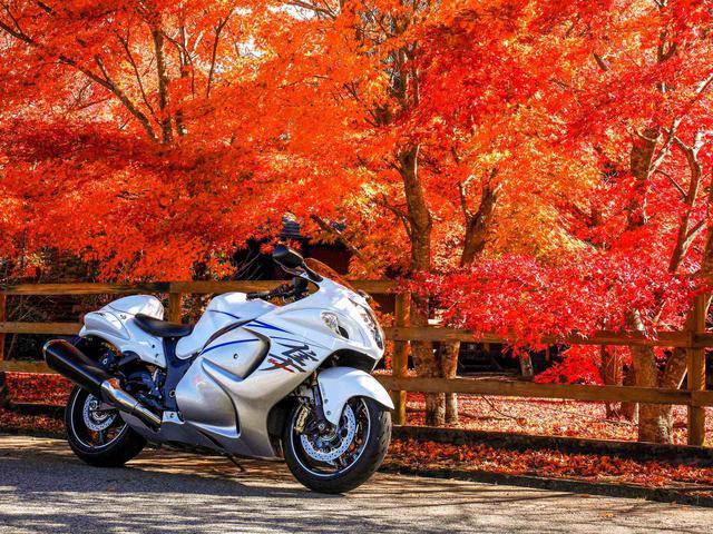 画像1: いつ乗っても幸せ。 やっぱりハヤブサはスズキの傑作すぎる大型バイク! - スズキのバイク!