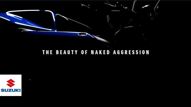 画像: THE BEAUTY OF NAKED AGGRESSION |  Suzuki www.youtube.com