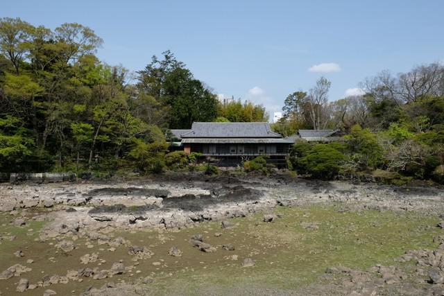 画像2: 池の底がむき出しだった楽寿園の小浜池 水位が過去最高更新  長雨などの影響か 静岡・三島市