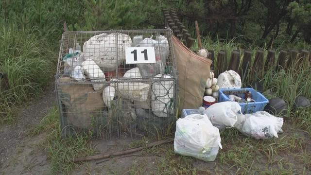 画像: 海岸にゴミ箱設置し