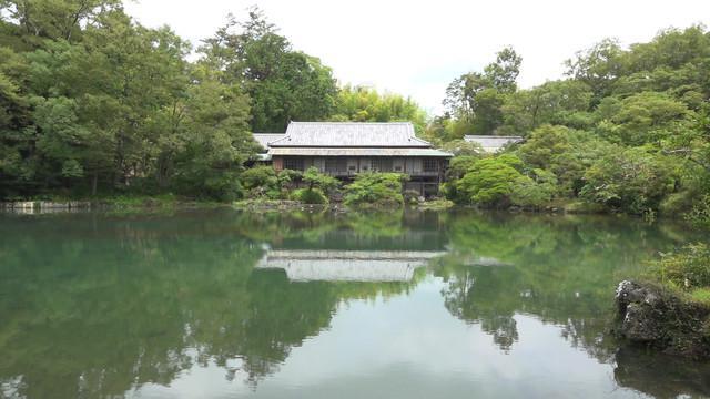 画像1: 池の底がむき出しだった楽寿園の小浜池 水位が過去最高更新  長雨などの影響か 静岡・三島市