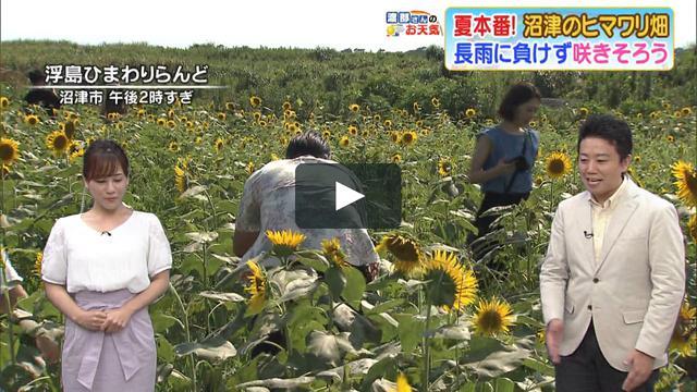 画像1: 0803yK vimeo.com