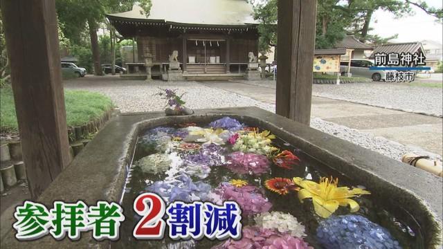 画像: コロナ禍、神社で「早く収束を」とお願いして「花手水」…参拝者「癒される」 静岡・藤枝市