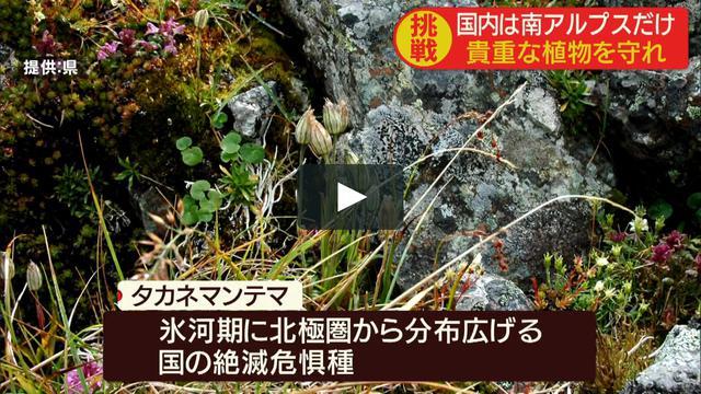 画像1: 0819yd-2 vimeo.com