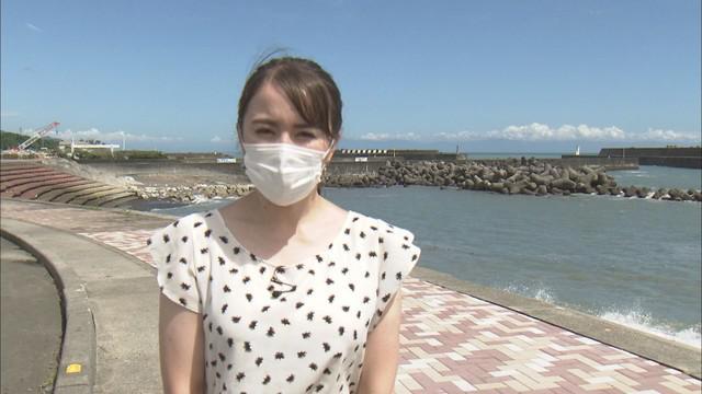 画像: 静岡市の用宗漁港では…