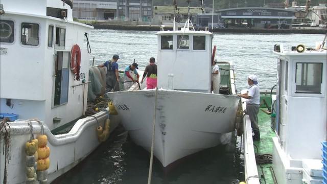 画像: 台風がひどくなりそうなら、大きな焼津港に漁船を移動させる
