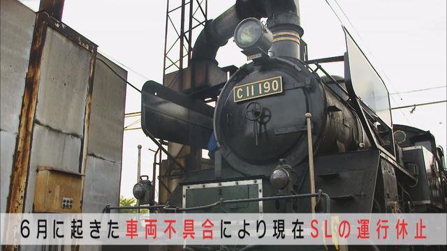 画像2: 新型コロナで打撃の大井川鉄道 25歳リーダーの再起にかける思いと行動力 静岡・島田市