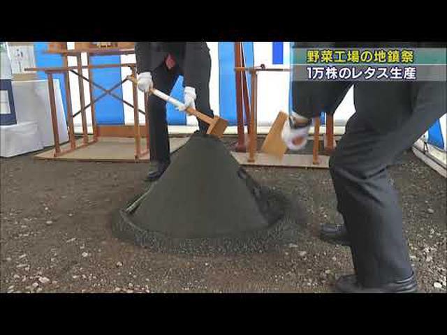 画像: 野菜工場建設、来年6月完成予定 1日に1万株のリーフレタスの生産が可能 静岡・三島市 youtu.be