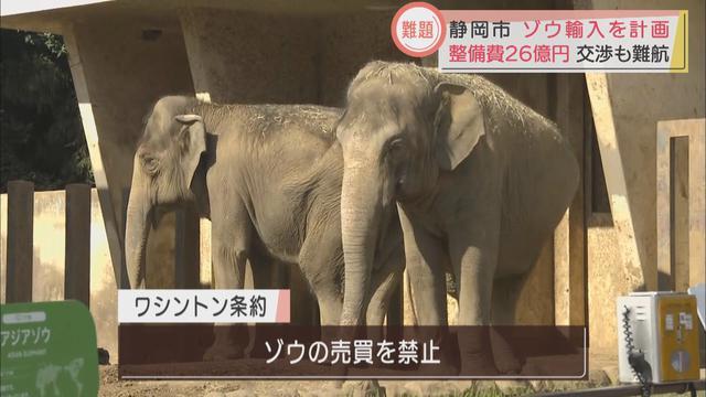 画像2: ゾウ4頭を輸入して環境を整えるのに26億円 静岡市