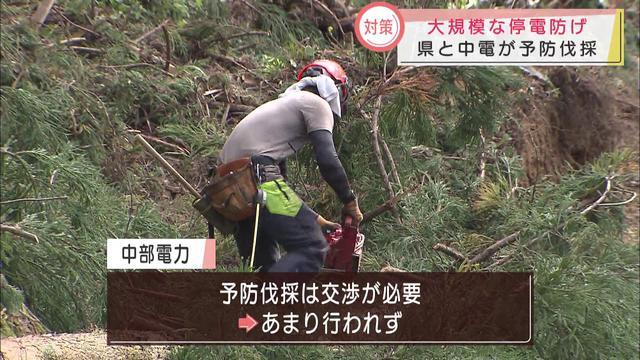 画像: 1週間近く続いた「電気がない生活」 停電の原因になる木を伐採 静岡県と中部電力 youtu.be
