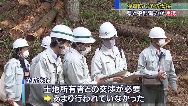 画像: おととし台風で長期間停電…山間部では6割が倒木が原因 「予防伐採」の取り組み始める 静岡県 youtu.be