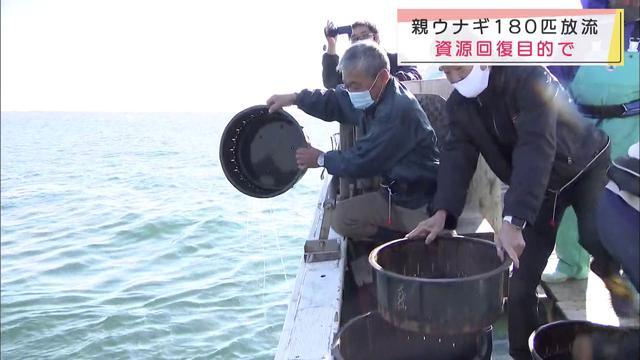 画像: 資源回復のためウナギを放流 浜松市 youtu.be