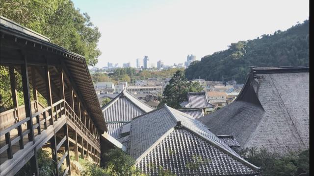 画像: 臨済寺から望む静岡市の市街地