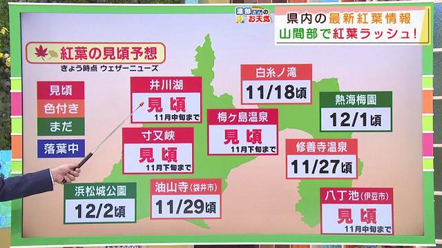 画像: 【11月13日 静岡】渡部さんのお天気 あすは「紅葉狩り日和」 youtu.be
