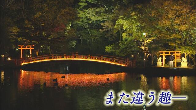 画像4: 富士山本宮浅間大社