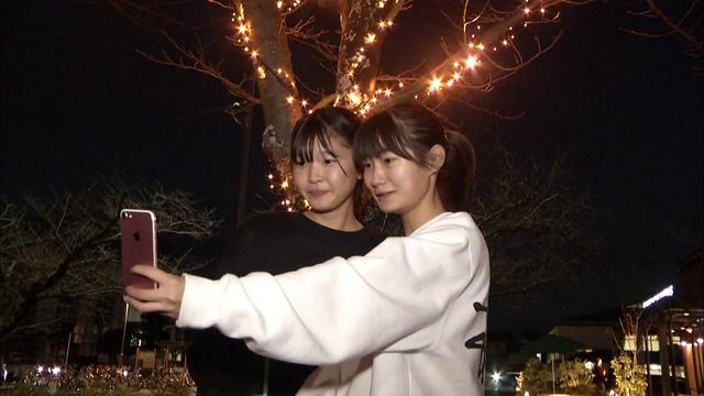 画像: 夜の蓮華寺池公園にイルミネーション 藤枝市 youtu.be