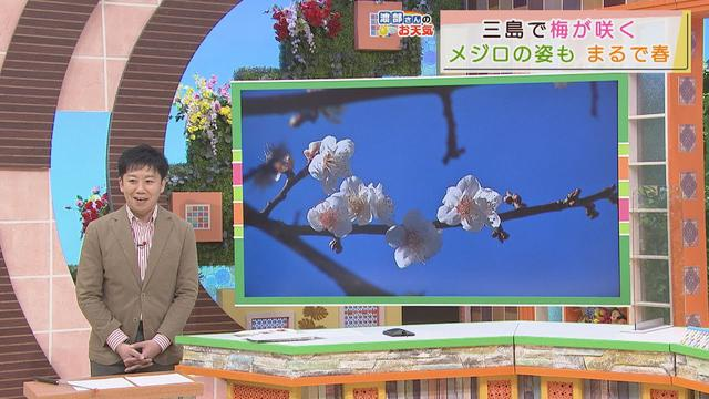 画像: 【12月22日 静岡】渡 あすは「日差しが暖かい」部さんのお天気 youtu.be