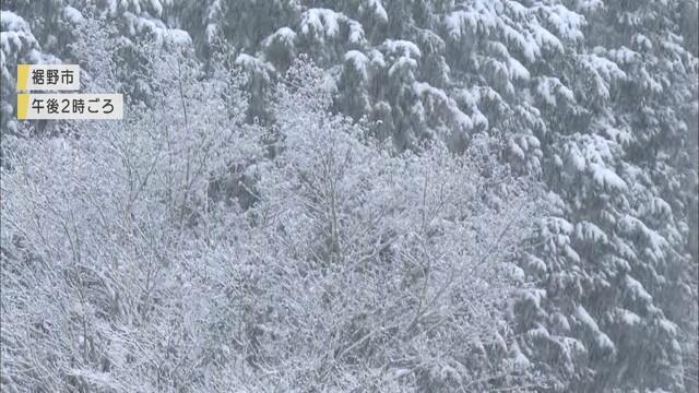 画像2: 家の屋根も真っ白に…静岡県で積雪 静岡市井川と御殿場で-2.2℃