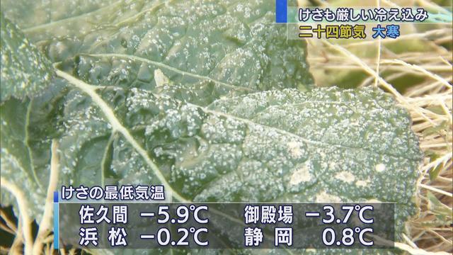 画像: 20日は大寒…静岡県内は冷え込み強まる 21日からは寒さ和らぐ予想 youtu.be