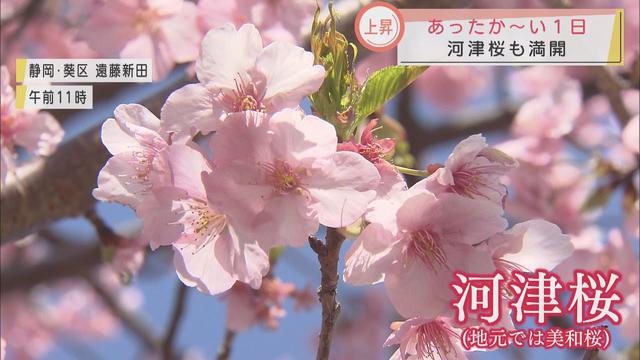 画像: 静岡県内各地で4月中旬から5月中旬並みの暖かさに youtu.be