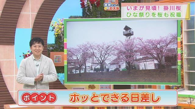画像: 【3月3日 静岡】あすは「ホッとできる日差し」 youtu.be