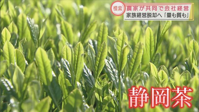 画像: 首位陥落の静岡県の茶産業 農家の抱える課題とは 新たな取り組みを始めた若手農家も youtu.be