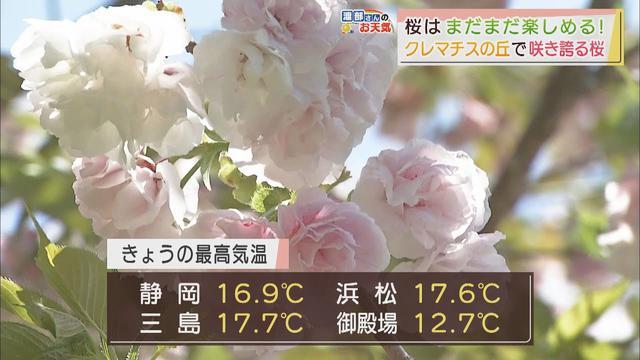 画像: 【4月6日 静岡】渡部さんのお天気 あすは「晴れても風はひんやり」 youtu.be
