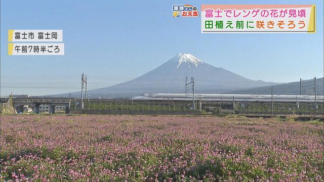 画像: 【4月22日 静岡】渡部さんのお天気 あすは「暑さ一段落」 youtu.be