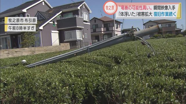 画像: 茶畑では防霜ファンが倒れ…