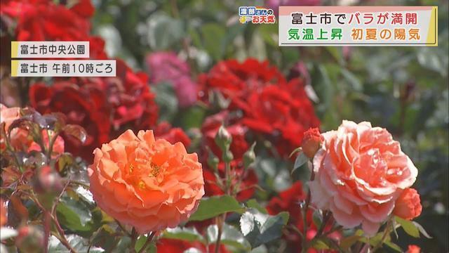 画像: 【5月6日 静岡】渡部さんのお天気 「あすは午後から雨雲流れ込む」 youtu.be