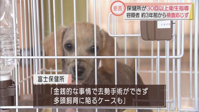 画像: 狭い場所で85匹の犬を飼育…容疑者の女に保健所が30回以上衛生指導 16日には保護された犬の里親探す譲渡会も 静岡・富士市