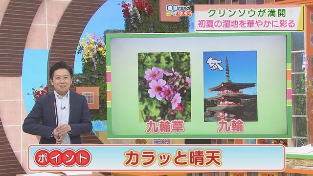 画像: 【5月31日 静岡】渡部さんのお天気 あすは「カラッと晴天」 youtu.be