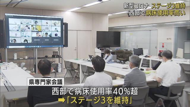 画像: 静岡県内の感染状況「ステージ3」を維持 県専門家会議「県西部で病床使用率が40%を超えている」 youtu.be
