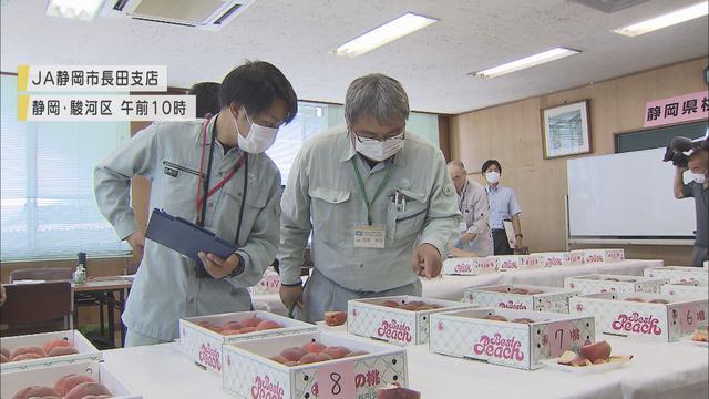 画像: 「長田の桃」 今年の出来栄えは… 静岡市の産地で品評会