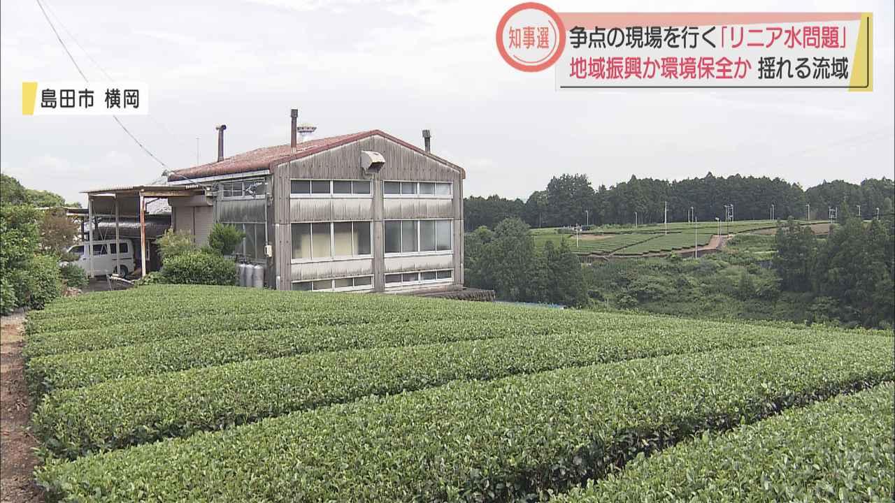 画像: 争点の現場(2)茶農家