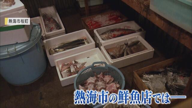 画像: 土石流災害で観光客が減少…鮮魚店も大きな打撃 それでも「漁師さんからは通常価格で買い取りたい」 静岡・熱海市