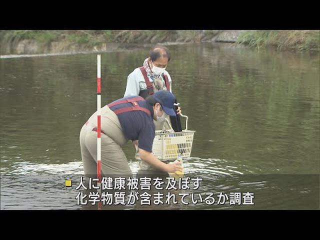 画像: 富士川の水に化学物質は? 静岡・山梨両県で合同の水質調査 youtu.be
