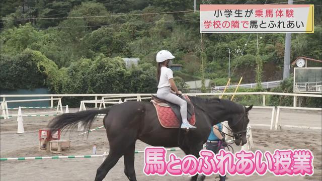 画像: 「ドキドキした」小学生が乗馬体験 静岡・河津町