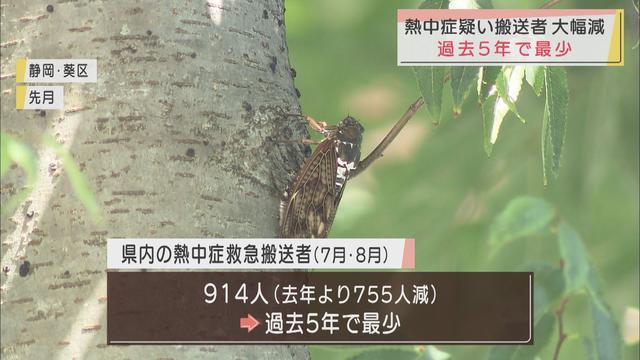 画像: 熱中症による救急搬送過去5年間で最少 静岡県