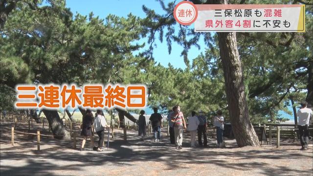 画像: 3連休最終日…観光客にぎわう 「首都圏や名古屋、山梨の人が多い」 静岡市・三保松原