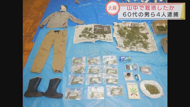 画像: 山中で大麻栽培 60代の男ら4人逮捕 静岡・富士宮市