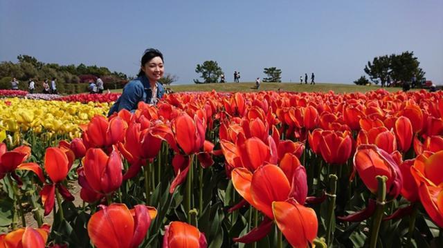 画像3: 春らしい春