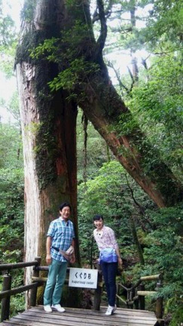 画像1: 大沼さんと旅に出た!!