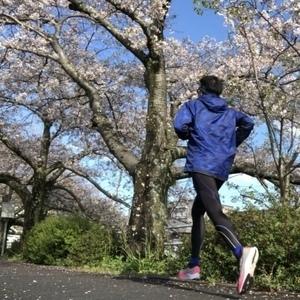画像1: 富士山に勇気をもらう!