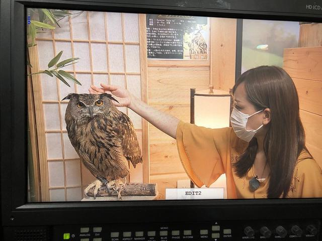 画像9: 厳選ショット大放出!!